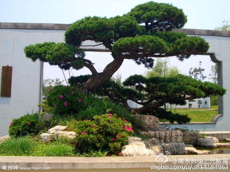 园林植物景观设计的要点有哪些