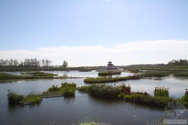人工湿地水质净化工程