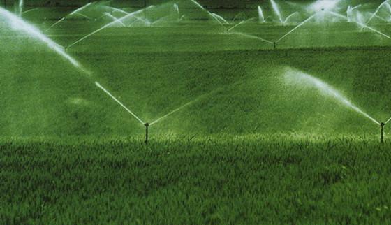 [喷灌技术]节水灌溉技巧