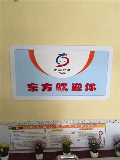 蓝天豚硅藻泥为东方幼儿园送健康