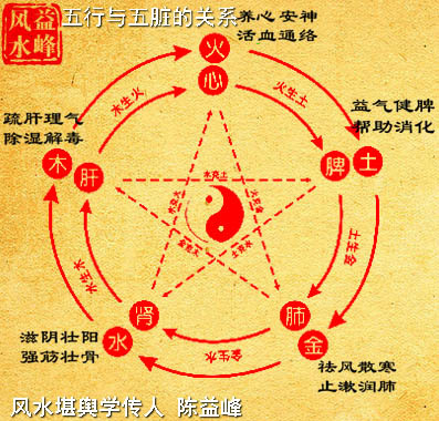 陈益峰:五行与人体健康