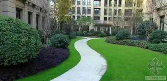 [纯干货/景观设计]植物配置基础及反季节重点|纯干货,实战分享