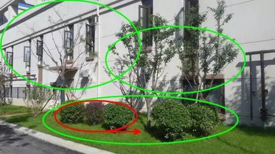 [纯干货/景观设计]植物配置基础及反季节重点 纯干货,实战分享-QQ截图20151025100631