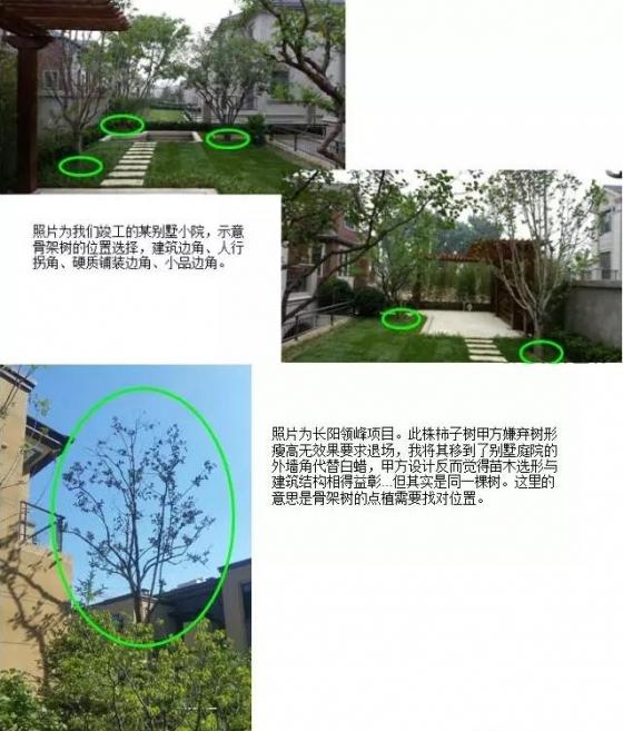 [纯干货/景观设计]植物配置基础及反季节重点 纯干货,实战分享-QQ截图20151025100232