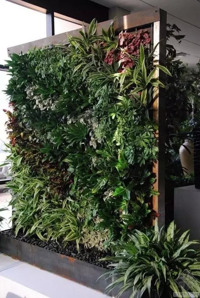 立体绿化相关技术资料