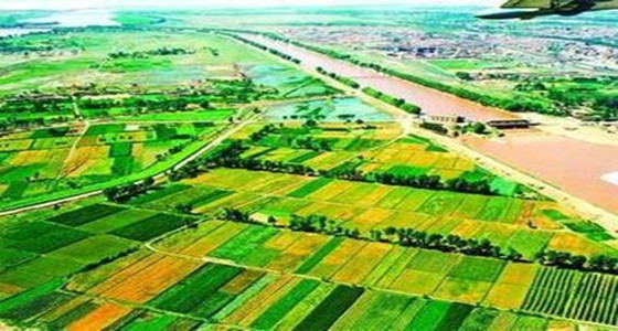 农田水利工程常用术语,小伙伴们,你们知道吗?