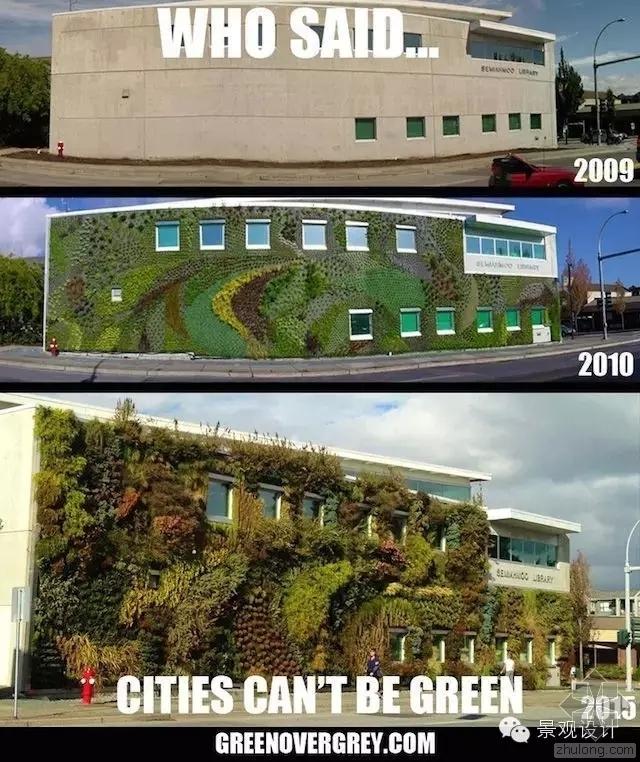 花费了6年时间  墙体终于成了热带雨林