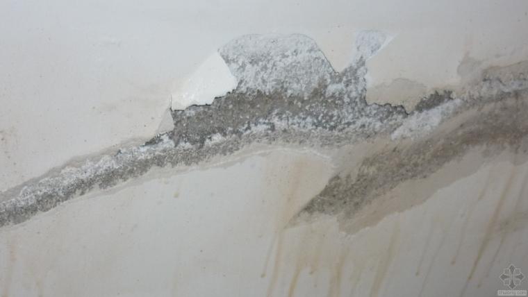 墙面渗水是什么原因,有什么处理办法?