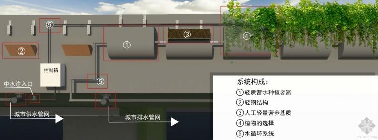 立交桥立体绿化技术与应用