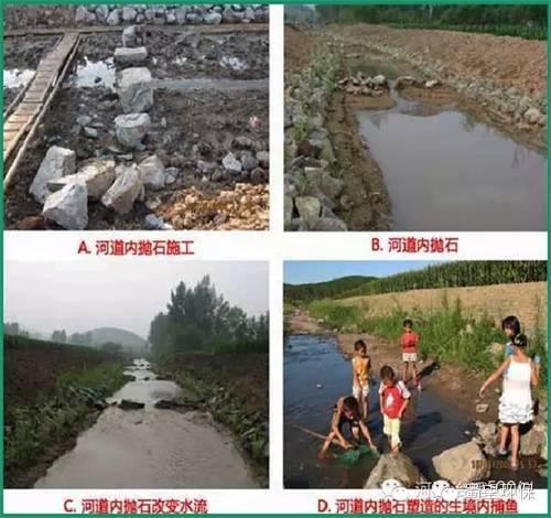 详解修复河道生态栖息地的设计与施工过程