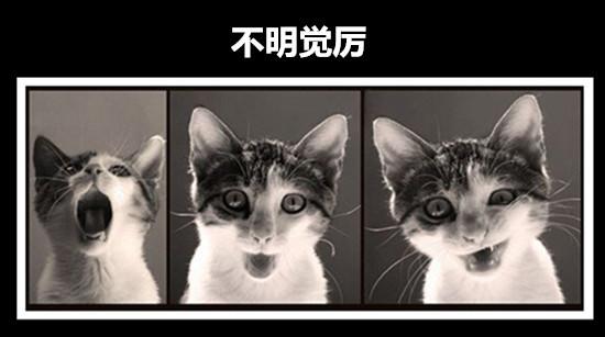 [公告]快来抢小编!筑龙首发原创号,关注送好礼!(已结束)-aaa