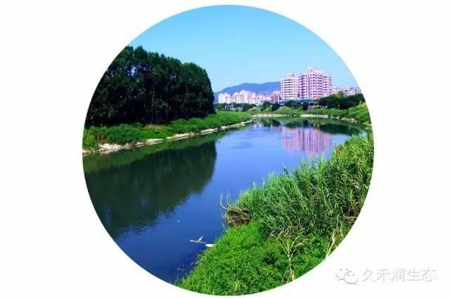 生态混凝土在河道治理工程中的应用案例分析