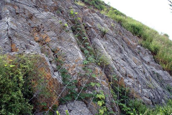 开发建设项目堤坝斜坡防护工程施工设计
