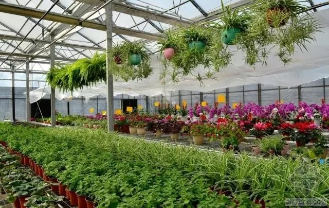 农业生态园规划设计方案及注意事项