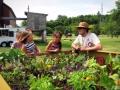 透过国外休闲农场规划 探讨开发经典案例!