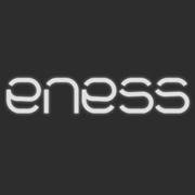 ENESS事务所