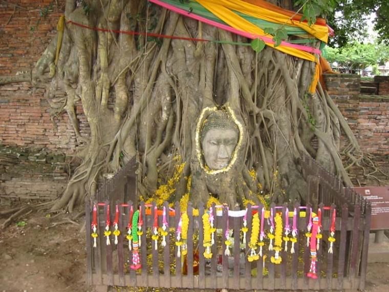 山友寺院(VatSamYotinLopburi)--山友寺院(Vat Sam Yot in Lopburi)第12张图片