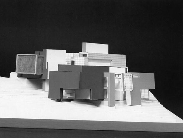 彼得•埃森曼设计住宅X