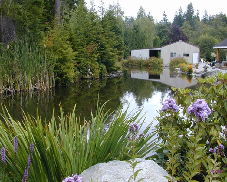 Residential Impacts to Water Quality & Aquatic Habitat第4张图片