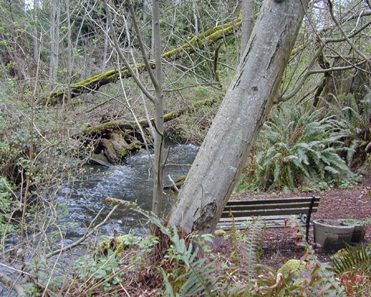 Residential Impacts to Water Quality & Aquatic Habitat第6张图片