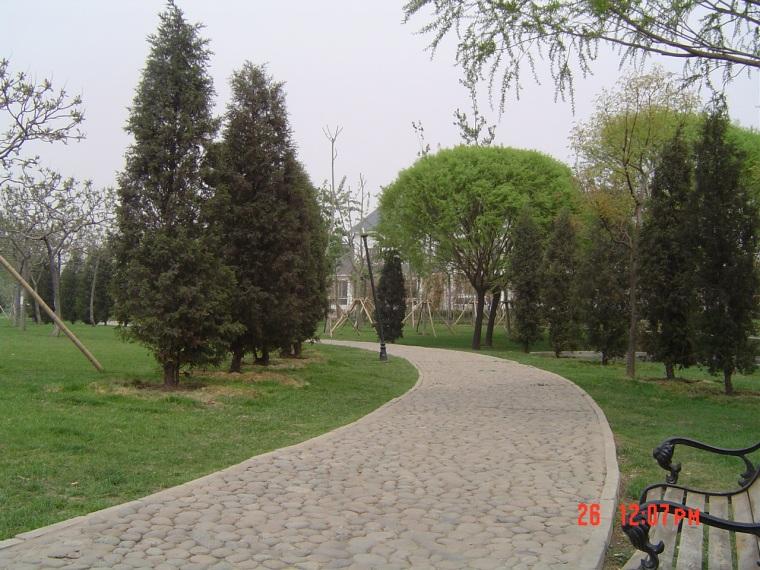公园一景第1张图片