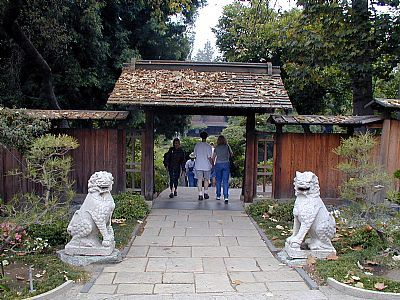 亨廷顿图书馆植物园(Huntington Library Botanical Garden)