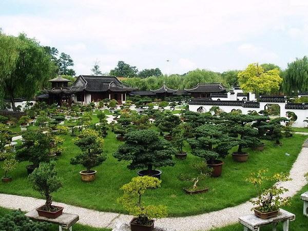 扬州盆景园