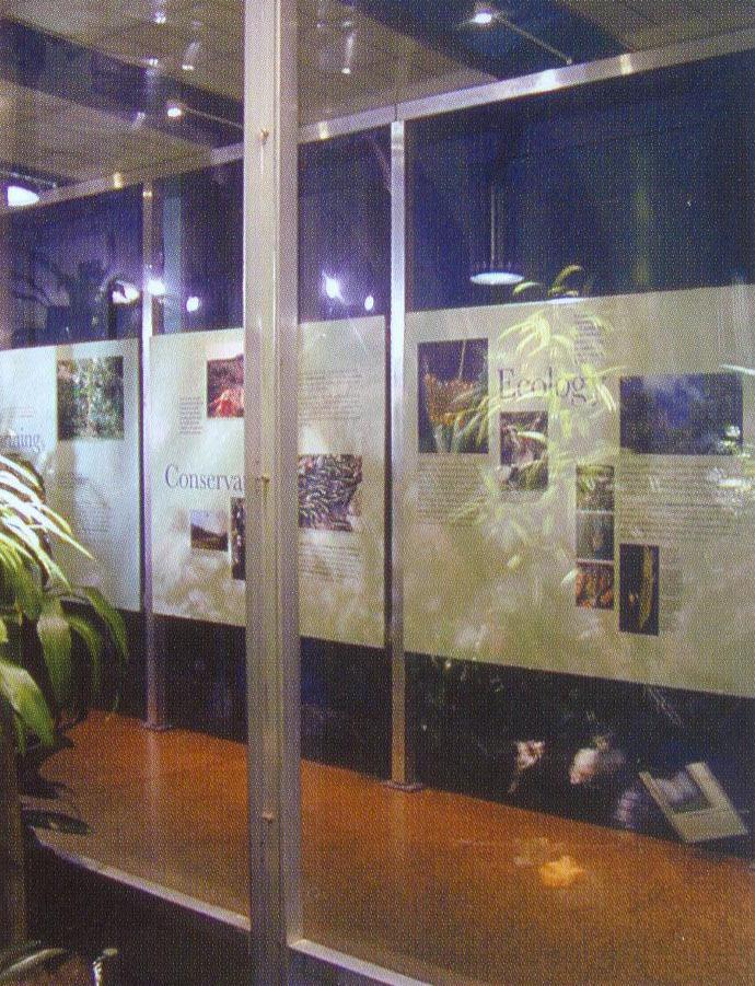 美国自然历史博物馆蝴蝶馆(Butterfly Vivarium American Museum of Natural History)第5张图片