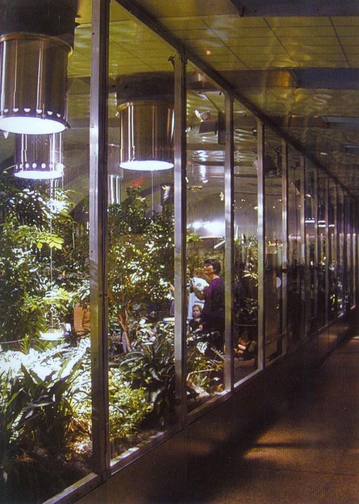 美国自然历史博物馆蝴蝶馆(Butterfly Vivarium American Museum of Natural History)第6张图片