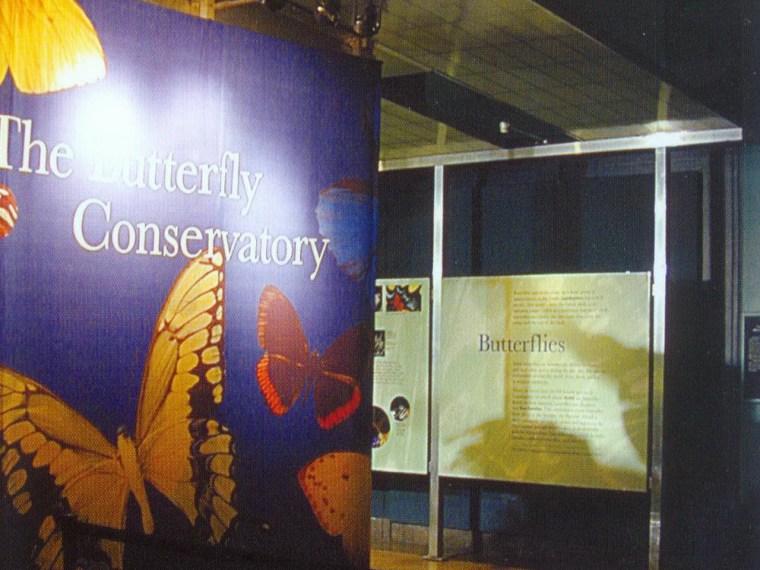 美国自然历史博物馆蝴蝶馆(Butterfly Vivarium American Museum of Natural History)第1张图片