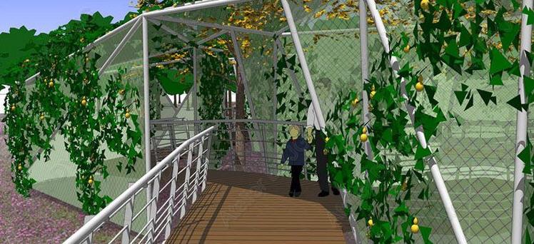 第7届中国(济南)国际园林花卉博览会设计师花园 第5张图片