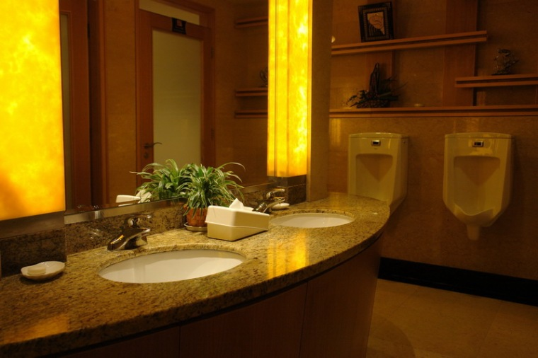 翠湖宾馆二期工程(商务综合楼)第6张图片