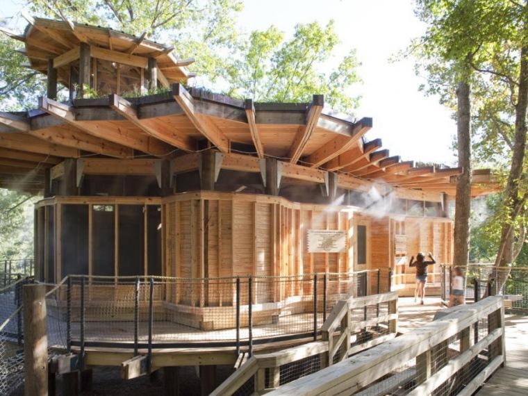 绿色环保树屋