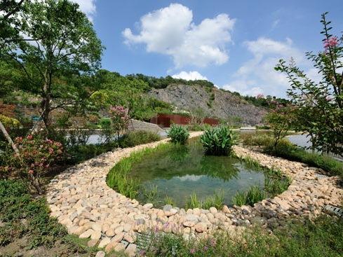 上海辰山植物园矿坑花园