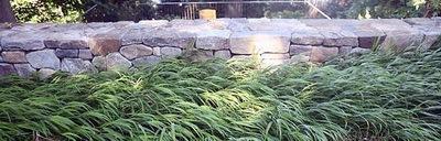 布鲁克赖恩山坡花园第7张图片