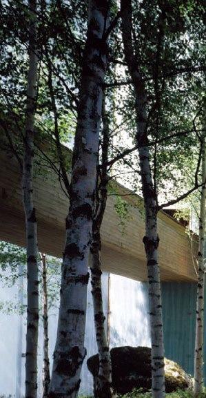 2000年汉诺威世博会芬兰馆_4