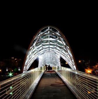 水上精灵--和平大桥夜景_3