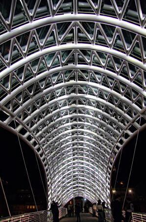 水上精灵--和平大桥夜景_5