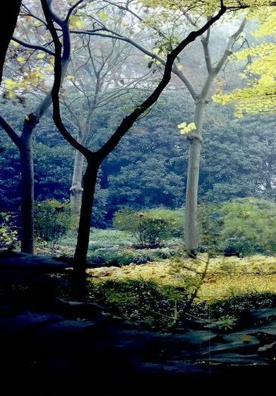 从方塔园解析现代中国式营造之路第10张图片