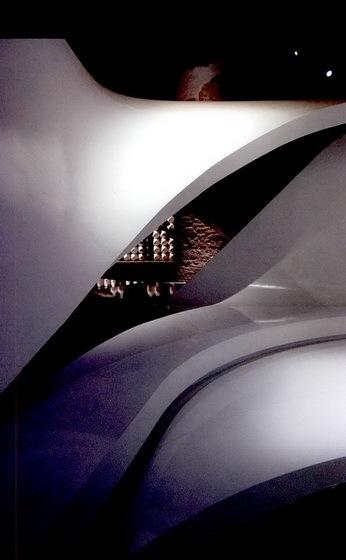 2008年第十一届威尼斯建筑双年展第13张图片