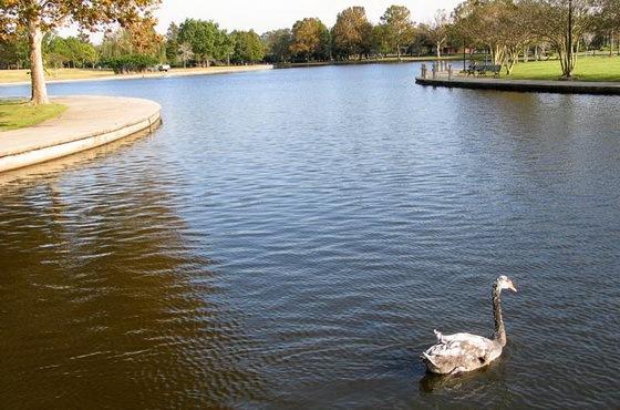 拉弗尼公园第6张图片