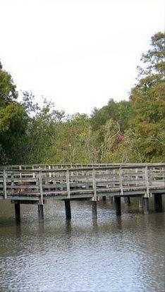 拉弗尼公园第13张图片