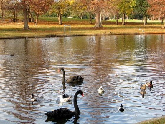 拉弗尼公园第33张图片