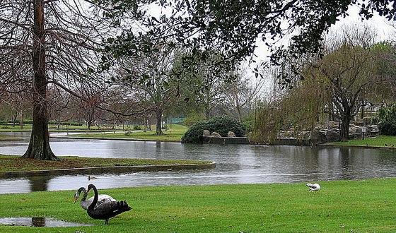 拉弗尼公园第35张图片