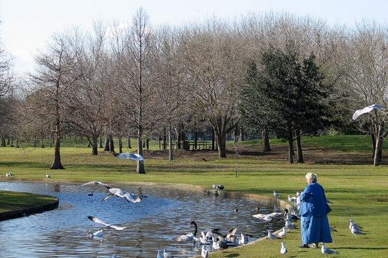 拉弗尼公园第36张图片