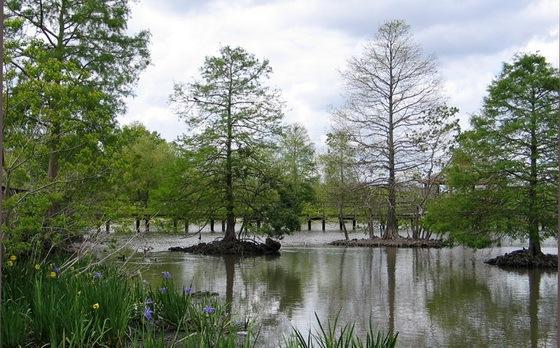 拉弗尼公园第50张图片