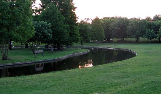 拉弗尼公园第54张图片