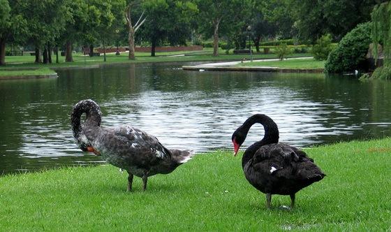 拉弗尼公园第58张图片