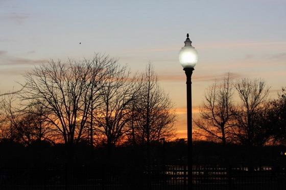 拉弗尼公园第76张图片