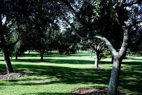 拉弗尼公园第78张图片